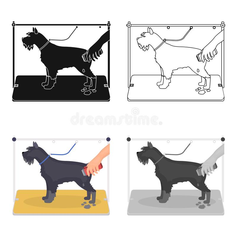 Haircut dogs in a stylish salon. Pet,dog care single icon in cartoon style vector symbol stock illustration web. Haircut dogs in a stylish salon. Pet ,dog care stock illustration
