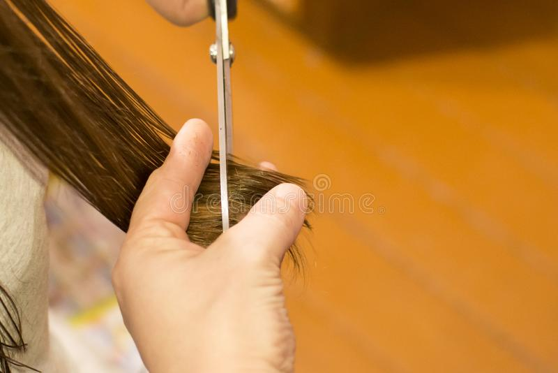 Haircut at home. Concept: hair care, savings in a hairdressing salon stock images