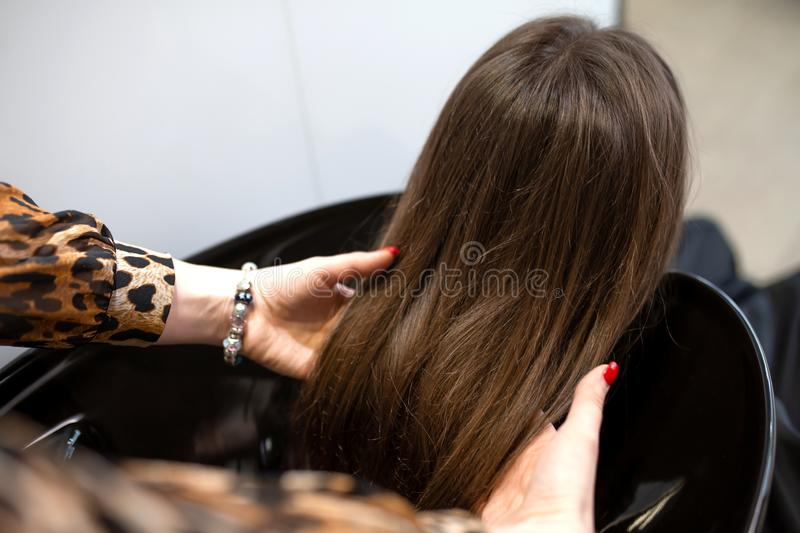 Haircut master washes hair of her client`s had royalty free stock photos