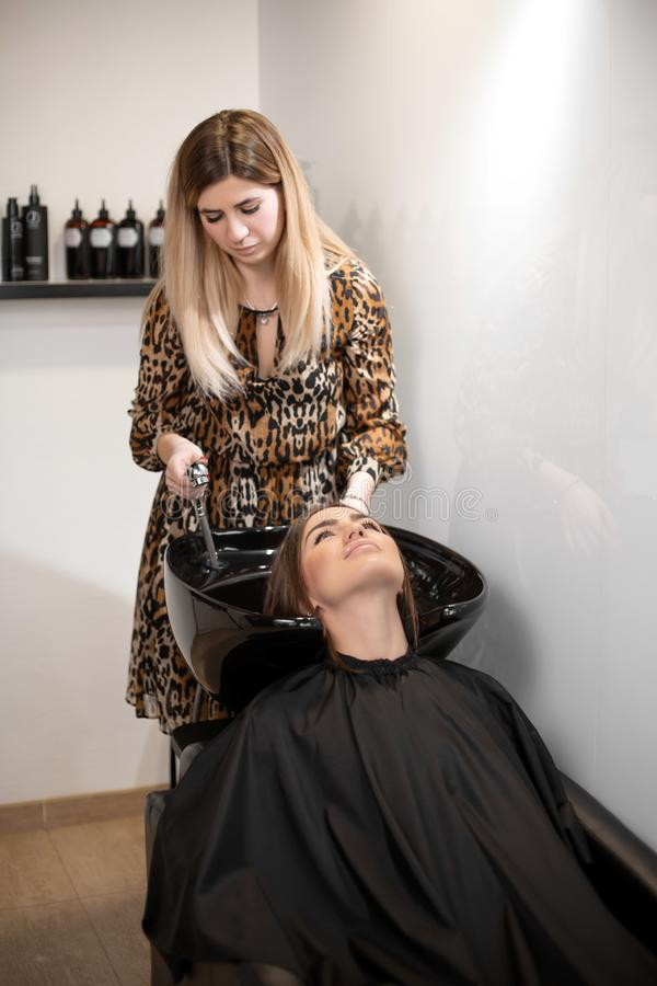 Haircut master washes hair of her client`s had royalty free stock images
