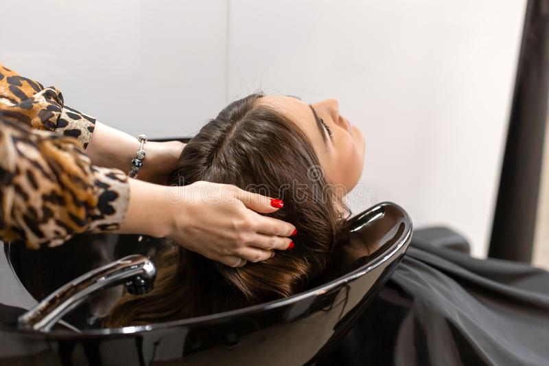 Haircut master washes hair of her client`s had stock photo