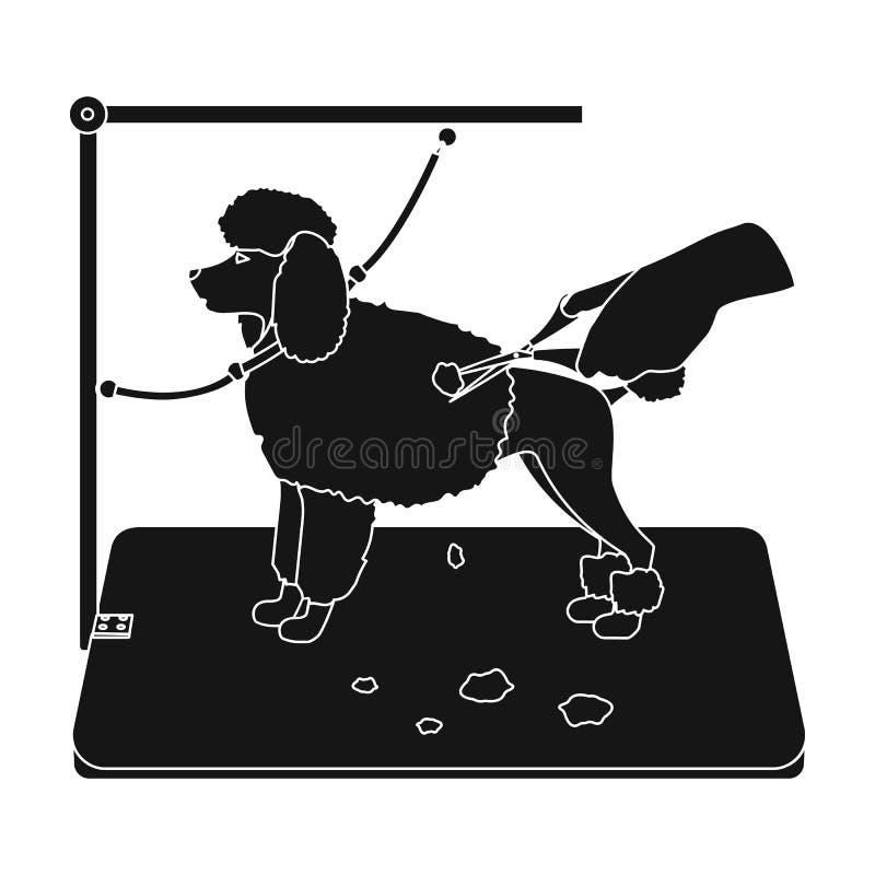 Haircut pet in a stylish salon. Pet,dog care single icon in black style vector symbol stock illustration web. Haircut pet in a stylish salon. Pet,dog care stock illustration