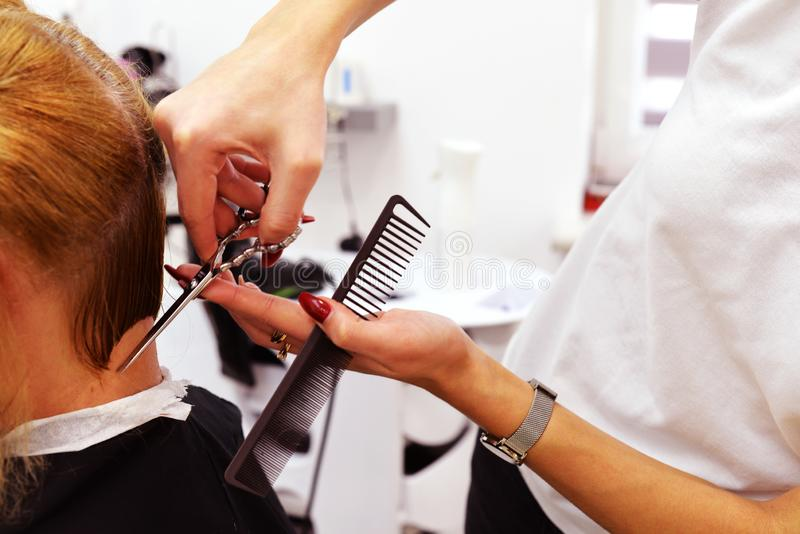 A haircut. short haircut and styling. picture in the cabin. the work of the master barber royalty free stock photography