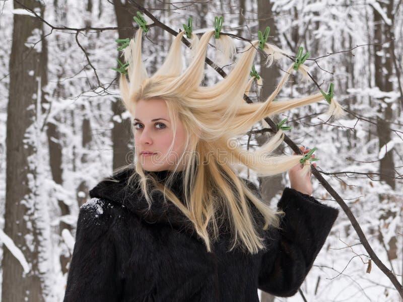 Hairdress de la reine de neige. image stock