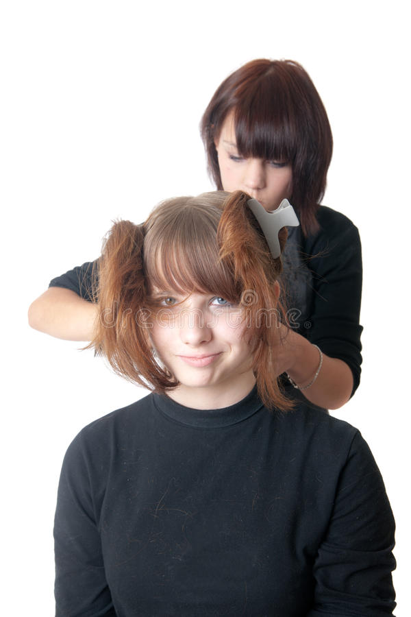 Download The Hairdresser Royalty Free Stock Photo - Image: 16268885