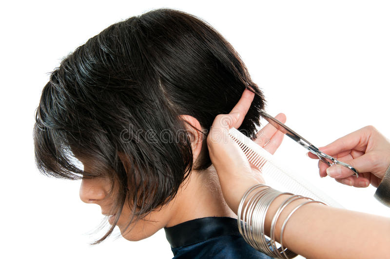 Download Hairdresser cutting hair stock photo. Image of girl, comb - 21861872