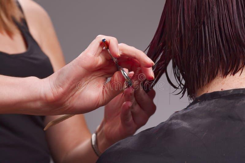 Hairdresser cutting hair stock photo