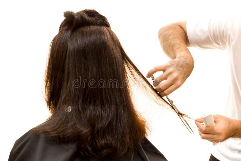 Hairdresser cutting woman hair with scissors isolated stock photo