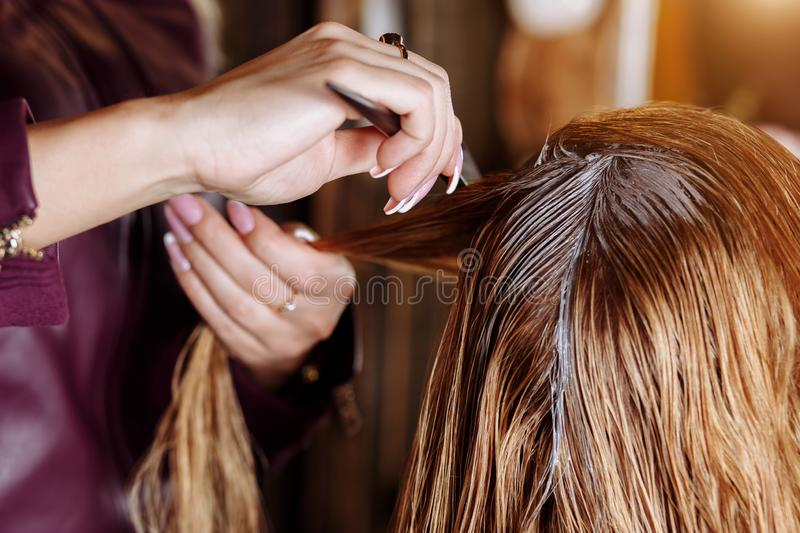 Hairdresser is dyeing female hair. Hairstylist with brush applying mask to hair of her client in beauty hair salon. The process of stock image