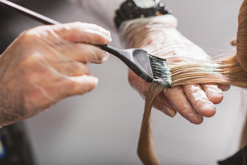Hairdresser is dying female hair royalty free stock photo