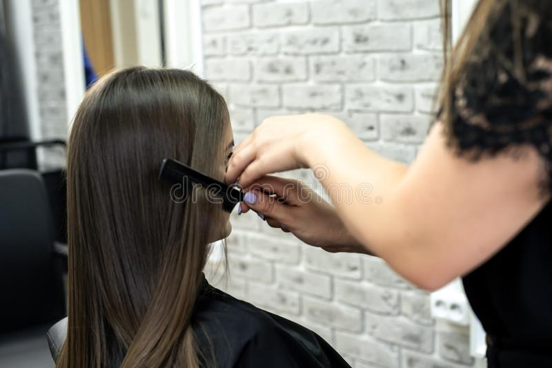 Hairdresser makes hair lamination in a beauty salon for a girl with brunette hair royalty free stock photo
