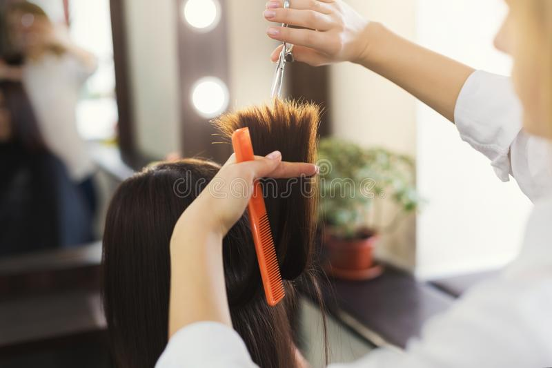 Hairdresser trimming brown hair with scissors stock photography