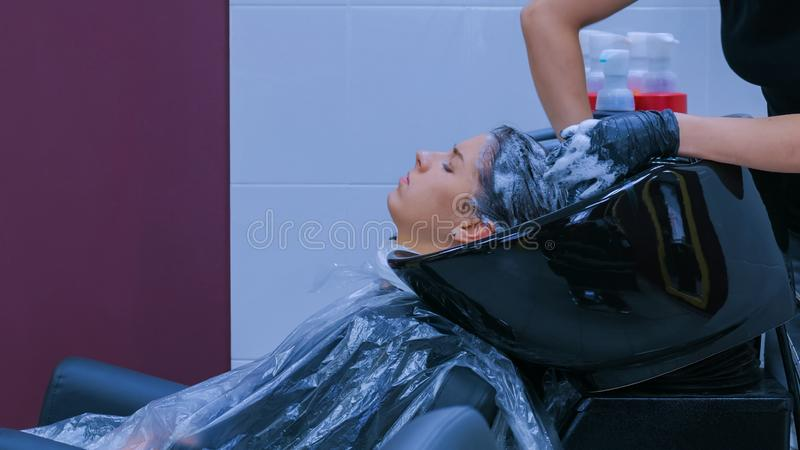 Hairdresser washing hair of woman client royalty free stock images