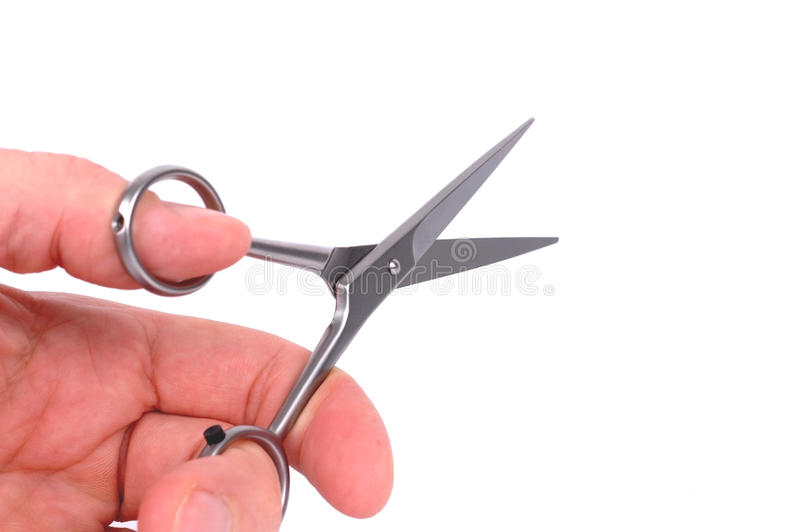 Download Hairdressing scissors stock photo. Image of silver, chrome - 21804086