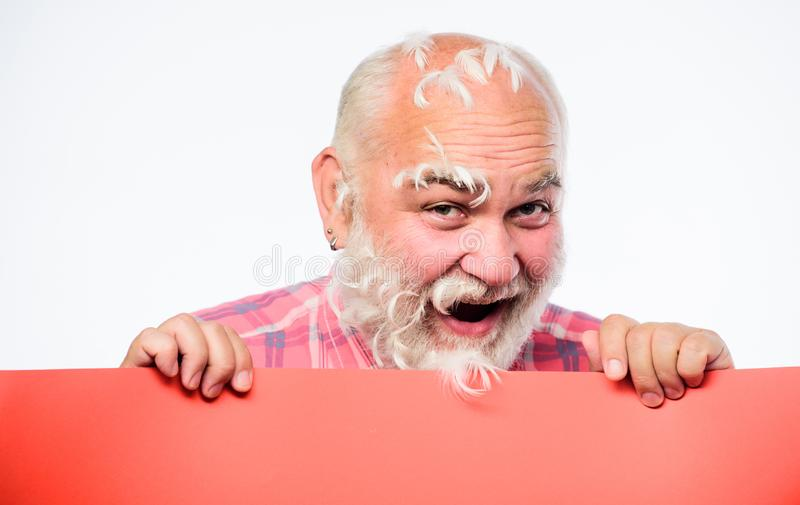 Hairloss concept. barbershop. Senior bearded man place announcement on banner. happy mature man with feathers gray hair royalty free stock image