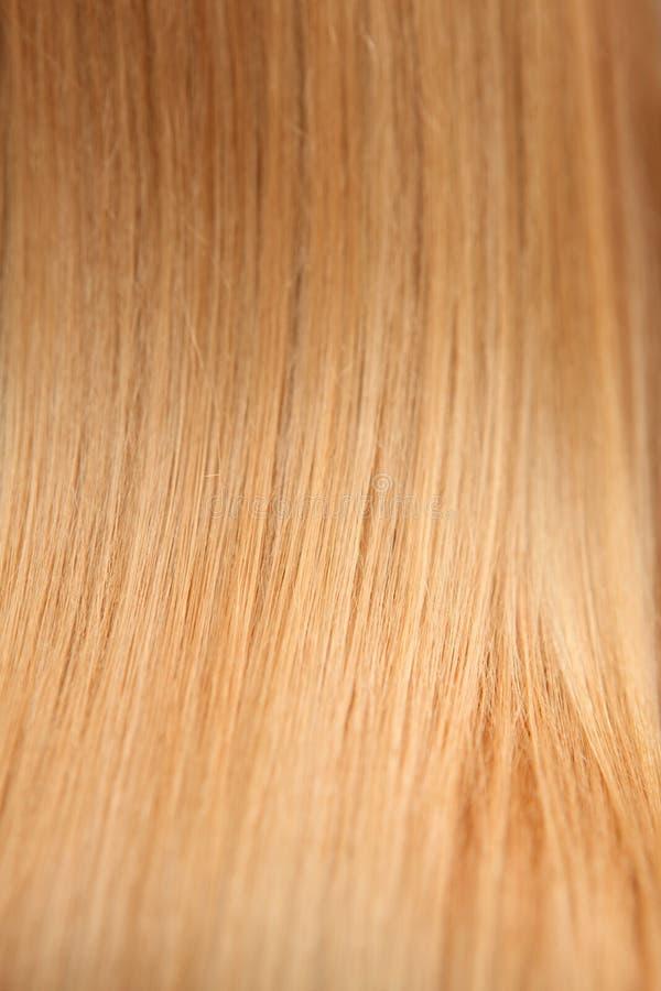 Hairs blokują makro- tło obraz royalty free