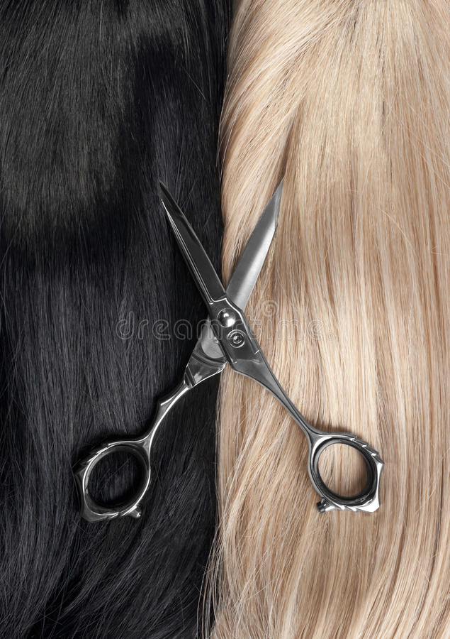 Download Hairstyle stock image. Image of long, barber, haircutting - 20735033