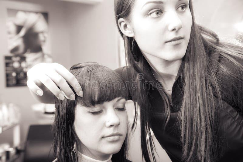 hairstyles imagem de stock