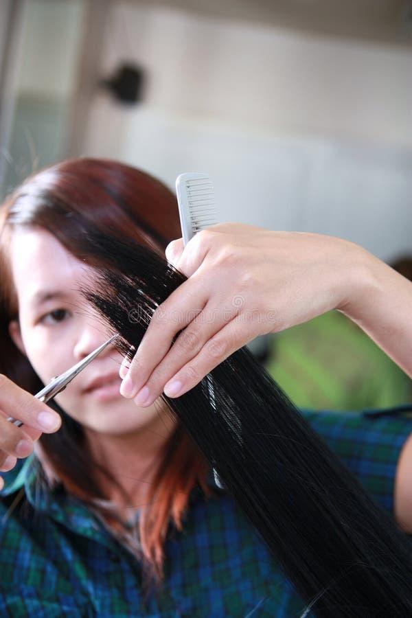 hairstylist стоковая фотография
