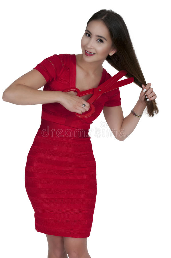 hairstylist стоковое изображение rf