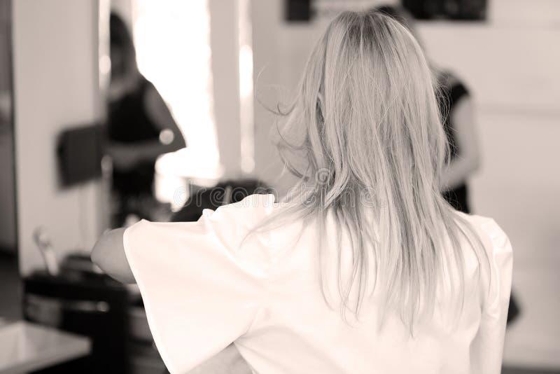 hairstylist стоковые изображения