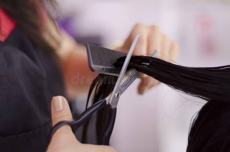 Hairstylist giving a haircut. Closeup of a female hairstylist giving a haircut to a client stock photo
