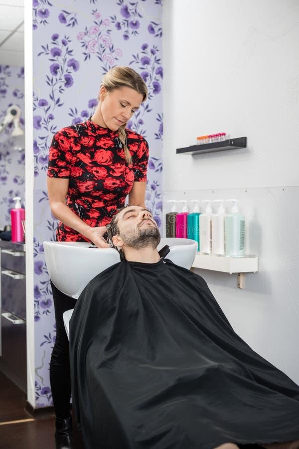 Hairstylist klienta Płuczkowy włosy W salonie fotografia royalty free