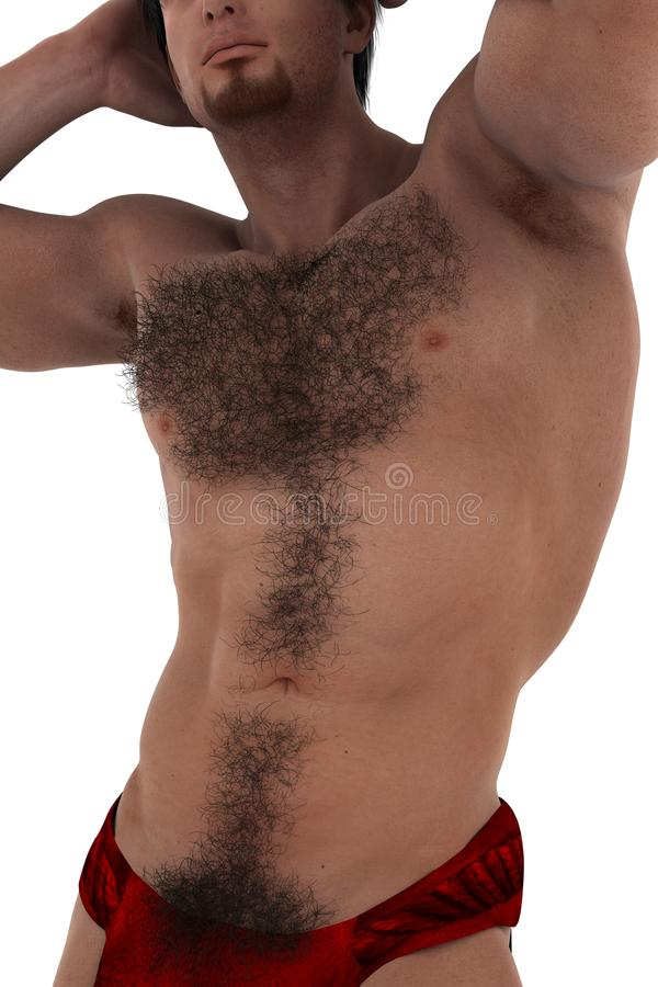 Download Hairy stock illustration. Image of head, features, face - 27628979