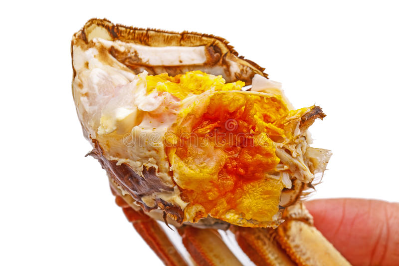 Hairy crabs meat and crab eggs isolated on white. stock photo