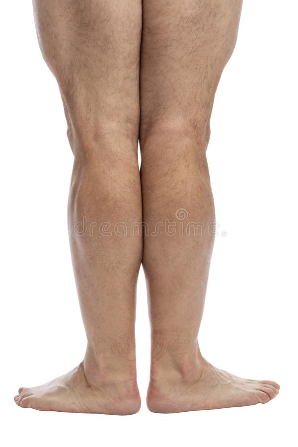 Hairy legs of an adult male. Isolated on a white background. Back view royalty free stock photos