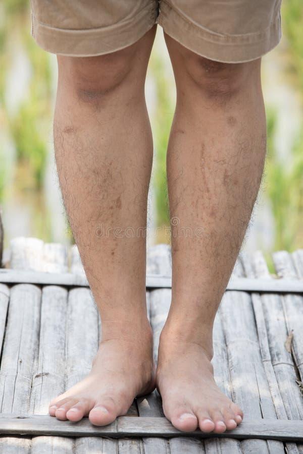 buff sexy beine