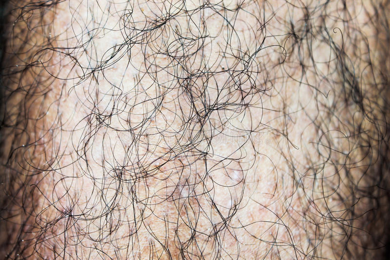 Hairy Male Leg royalty free stock image