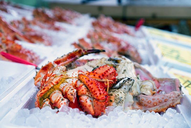 Hairy Ookurigani Crab On Ice stock images