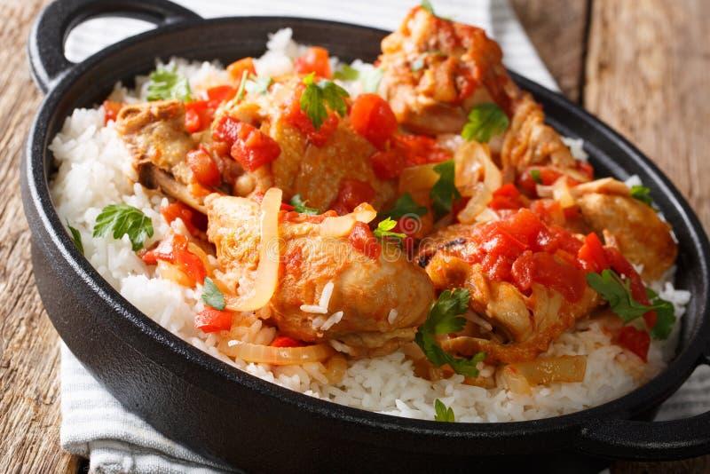 Haitański stewed kurczaka poulet creole z ryżowym zbliżeniem horion obrazy royalty free
