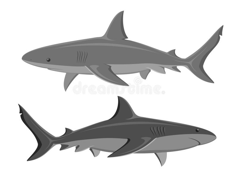 hajar Uppsättning av två stora hajar stock illustrationer