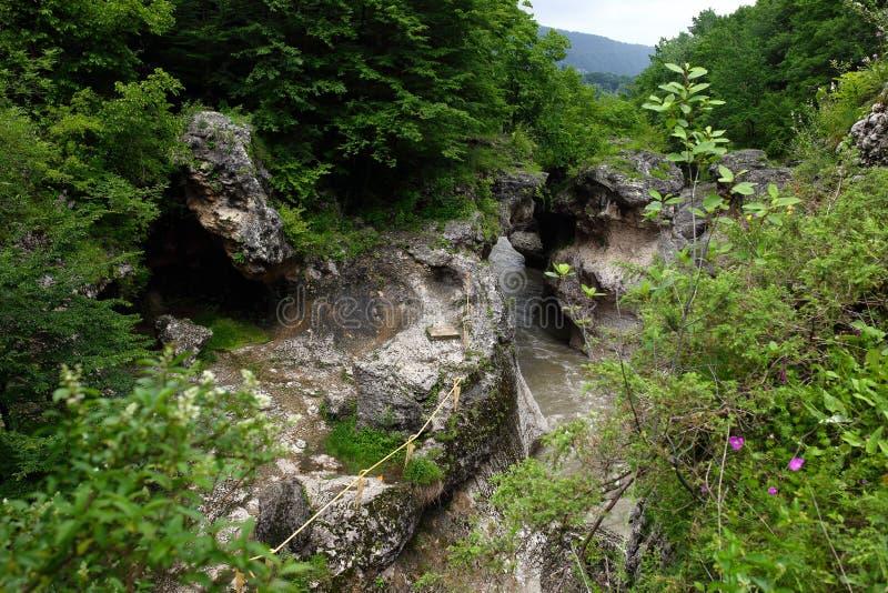Hajokh klyfta, mycket smal och djup kanjon med bevuxna lutningar Republik Adygea arkivfoto