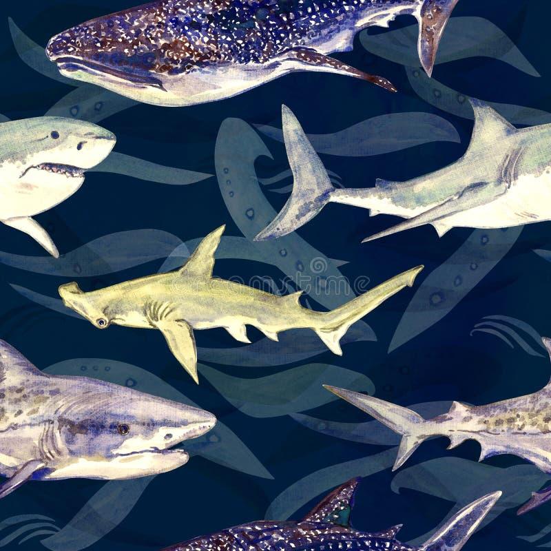 Hajvariation: Blått, tiger, val och Hammerhead, hand målad vattenfärgillustration, sömlös modell på mörker - blått stock illustrationer