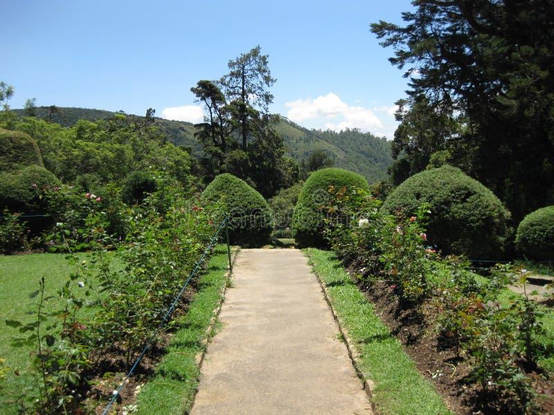 Hakgala庭院在斯里兰卡 免版税库存照片