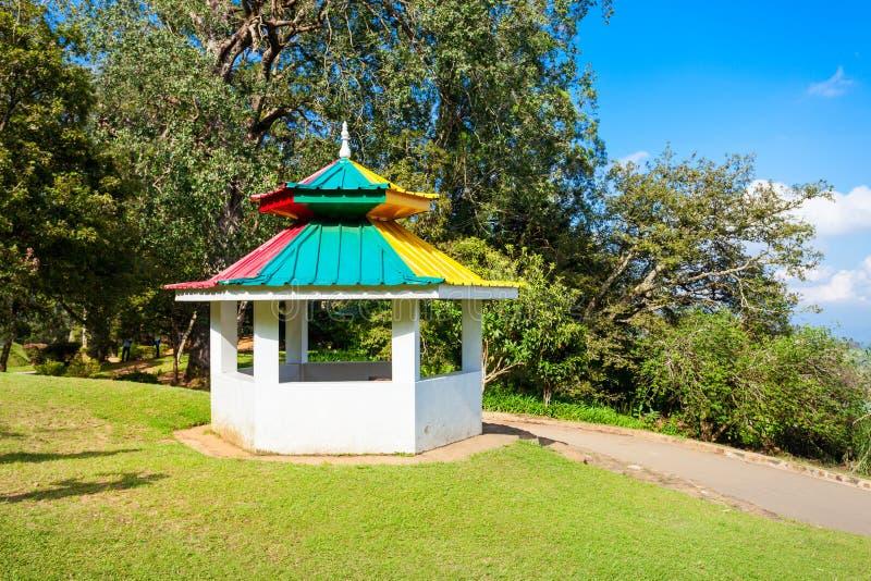 Hakgala植物园,努沃勒埃利耶 免版税库存图片