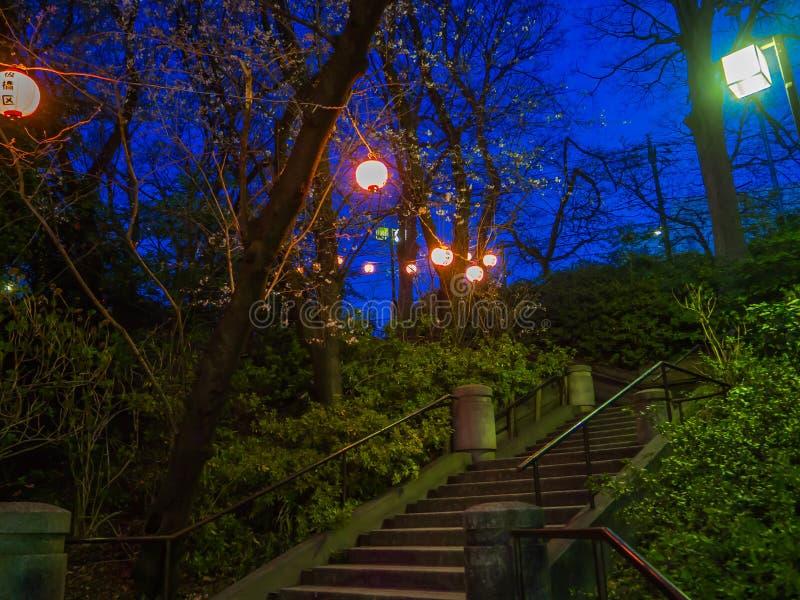 HAKONE, ЯПОНИЯ - 2-ОЕ ИЮЛЯ 2017: Письма Japanesse в желтом фонарике на ноче в вишневые цвета в Сакуре величественной стоковое изображение