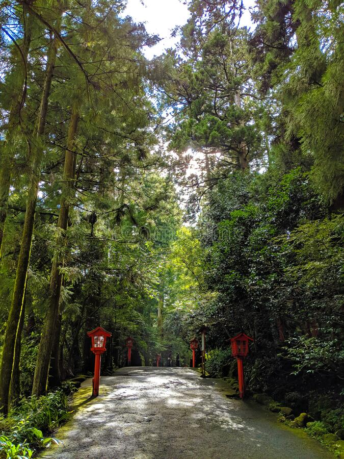 Hakone Forest Temple Path to the Lake royalty free stock image