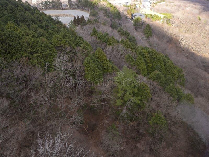Hakone in Japan Owakudani is geothermische vallei met actieve zwavelopeningen en de hete lentes in Hakone royalty-vrije stock afbeelding