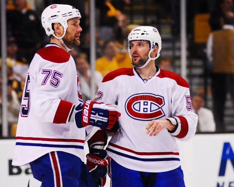 Hal Gill och Mathieu Darche, Montreal Canadiens royaltyfria bilder