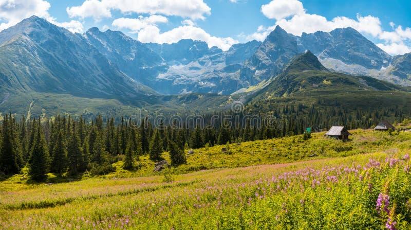 Hala Gasienicowa, montañas Zakopane Polonia de Tatra imagen de archivo