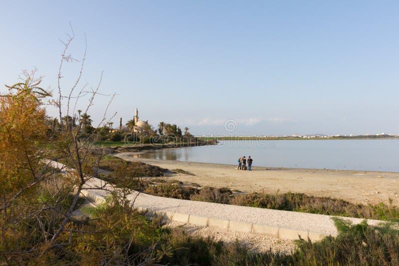 Hala Sultan Tekke på Larnaca den salta sjön i Cypern arkivfoton