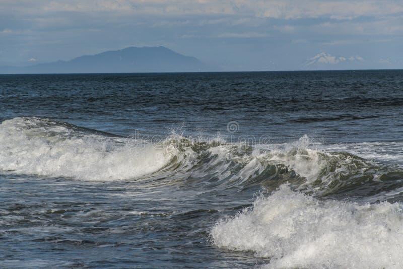 Halaktyr strand kamchatka Rysk federation royaltyfri foto