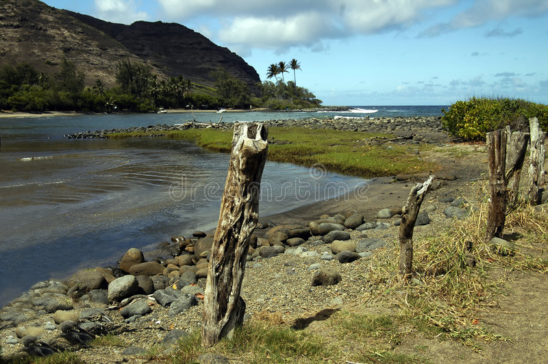 halawa Гавайские островы залива стоковые изображения