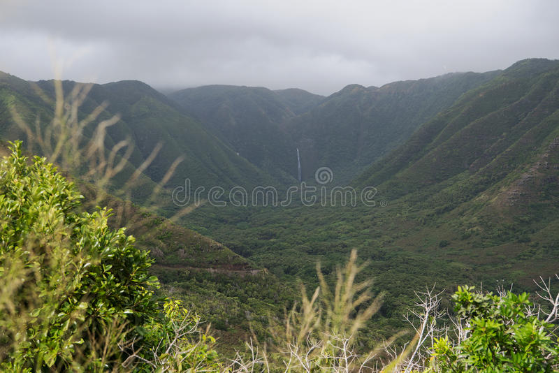 Download Halawa Valley on Molokai stock photo. Image of island - 83723188