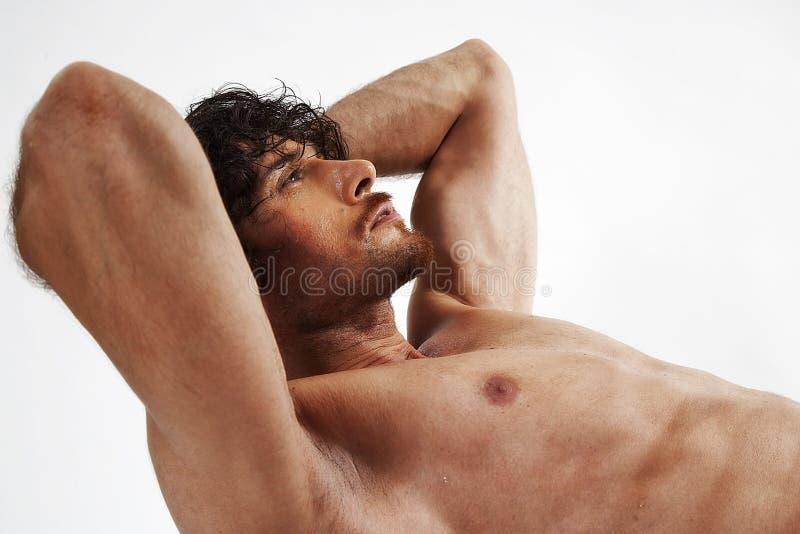 Halb nackte Portraits des stattlichen muskulösen Mannes lizenzfreie stockbilder