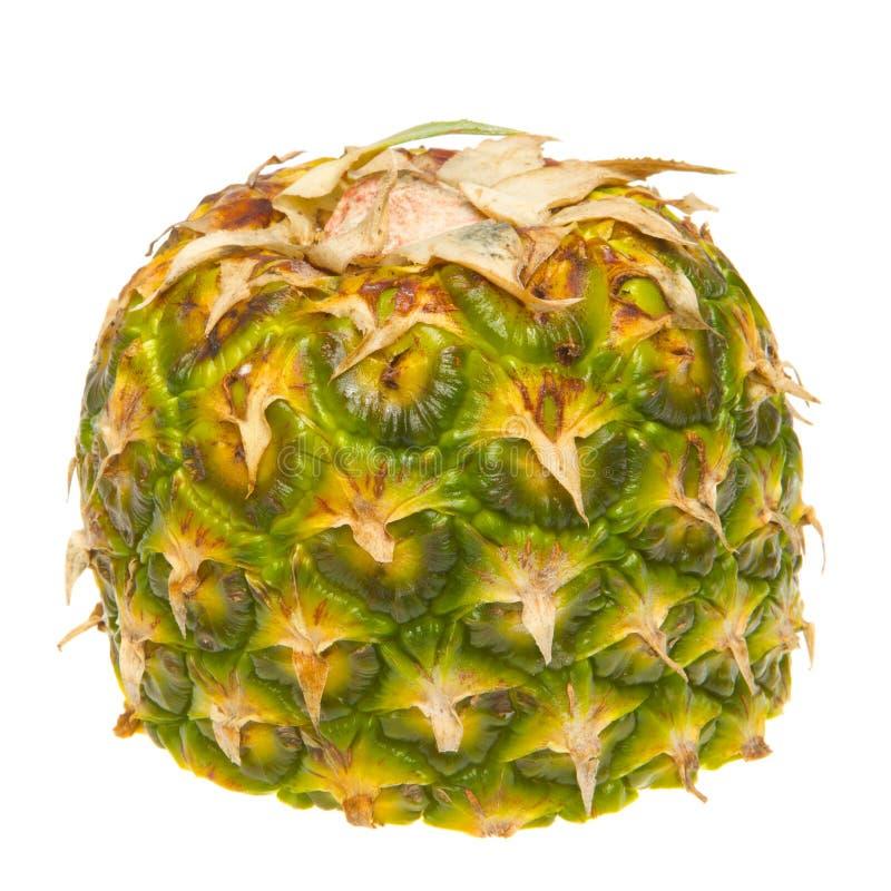 Halbe Ananas lizenzfreie stockfotografie